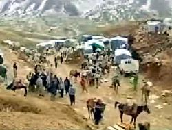 chevaux en garde à vue Baskale