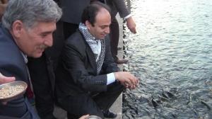 Baydemir Urfa Balikli göl