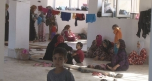 réfugiés turkmènes shiites sinjar