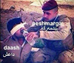Peshmerga donnant à boire à un prisonnier de EI.